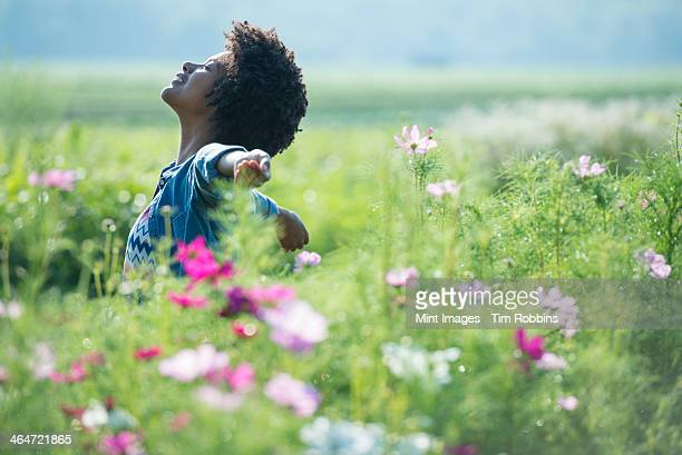 A woman standing among the flowers with her arms outstretched.  Pink and white cosmos flowers.
