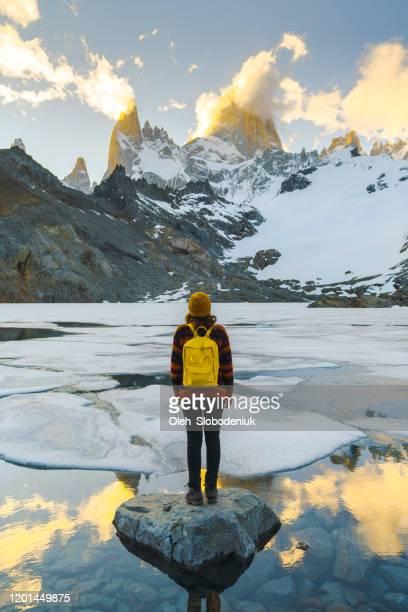 frau steht und schaut fitz roy berg in patagonien - patagonische anden stock-fotos und bilder