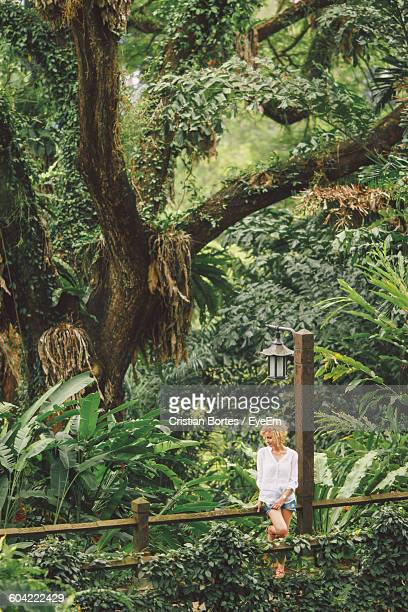 Woman Standing At Fence Against Trees In Park