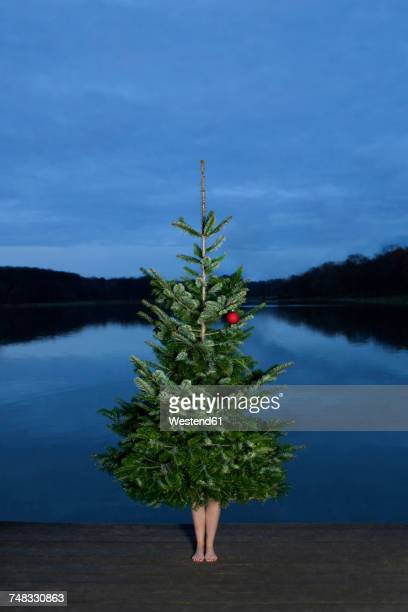 woman standing behind christmas tree on jetty - sapin de noel humour photos et images de collection