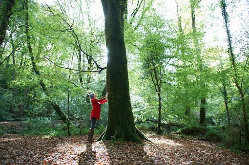 Woman standing beside large tree trunk in forest. - gettyimageskorea