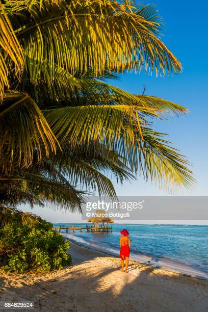 Woman standing by a palm tree on the beach. Punta Cana, Dominican Republic.