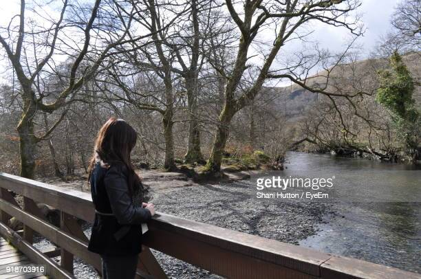 woman standing by railing against bare trees - hutton stock photos and pictures