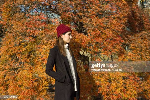 woman standing by tree during autumn - hands in pockets stock pictures, royalty-free photos & images