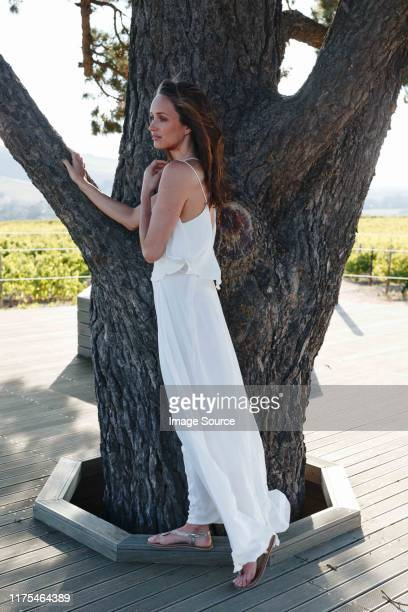 woman standing by tree in vineyard, cape town, south africa - long dress stock-fotos und bilder