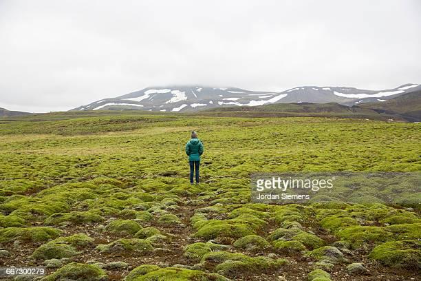 a woman standing in a lush green field. - tundra foto e immagini stock