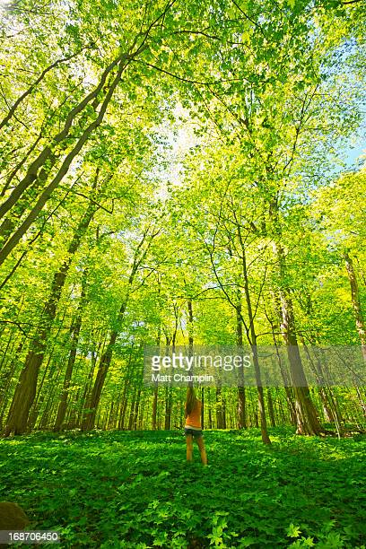Woman Standing in Lush Green Spring Forest