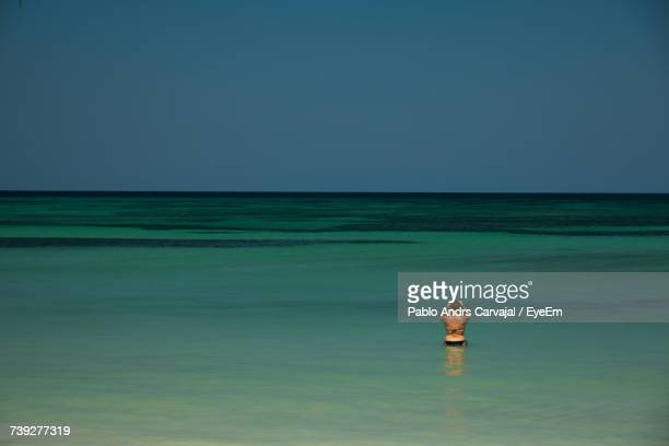 woman standing in sea against clear sky - carvajal stock photos and pictures