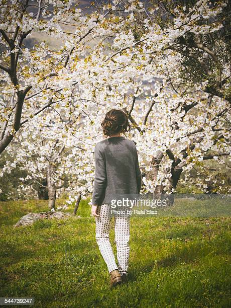 Woman standing near cherry trees in blossom