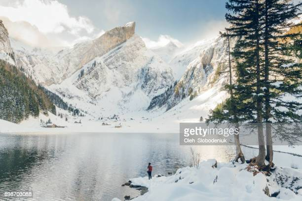 woman standing  near  the lake in switzerland - mere noel stock pictures, royalty-free photos & images
