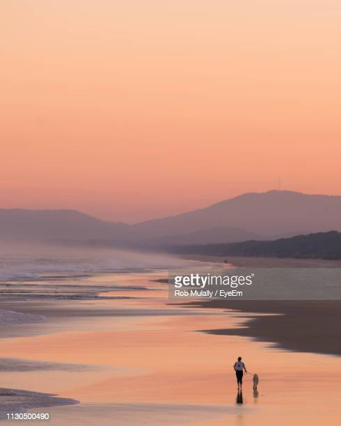 woman standing on sea shore against orange sky - port macquarie stock pictures, royalty-free photos & images