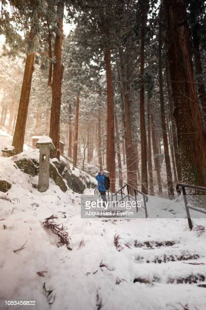 Woman Standing On Snow Covered Field In Forest