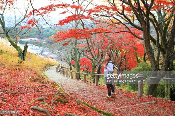 Woman Standing On Steps In Forest During Autumn