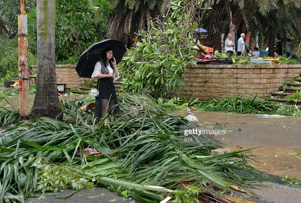 TOPSHOT - A woman stands amid downed tree branches on a street in Xiamen, China's eastern Fujian province, after Typhoon Meranti made landfall on September 15, 2016. Typhoon Meranti made landfall in Fujian early September 15 with winds up to 230kph, knocking out electricity in some areas and causing rail delays. / AFP / STR / China OUT