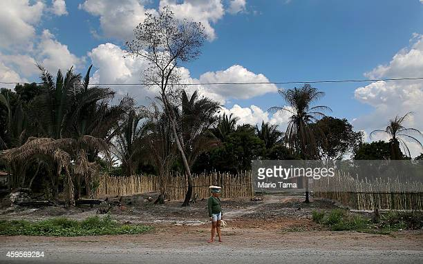 A woman stands in a deforested section of the Amazon basin on November 24 2014 in Maranhao state Brazil The nongovernmental group Imazon recently...