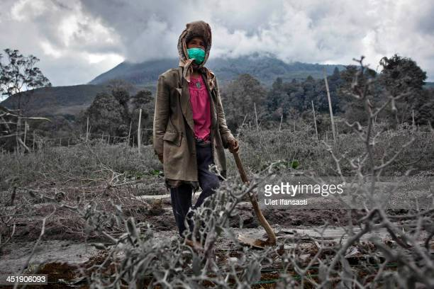 A woman stands in her field which has been covered by ash from the eruption of mount Sinabung in Sigarang Garang village on November 25 2013 in Karo...