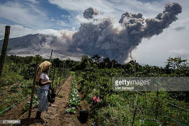 A woman stands in her fields as Mount Sinabung spews pyroclastic smoke seen from Simpang Empat village on June 19 2015 in Karo District North Sumatra...