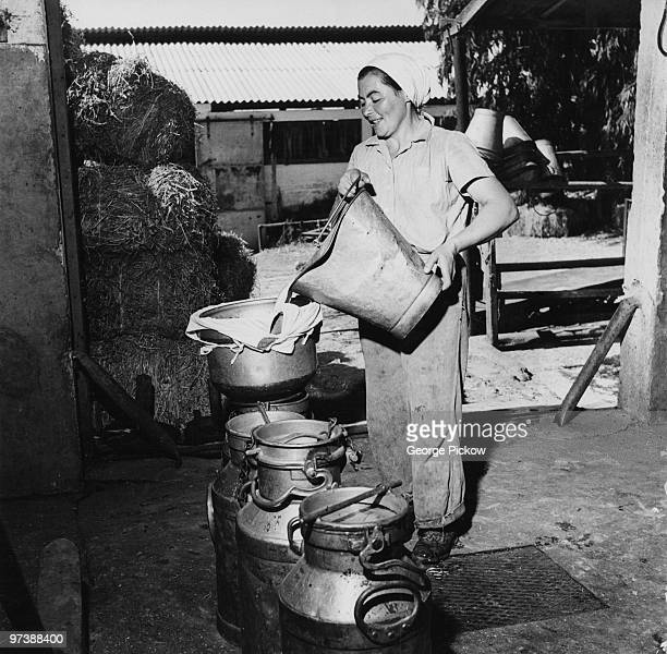 A woman straining milk at the dairy section of the Givat Brenner Kibbutz Israel circa 1950