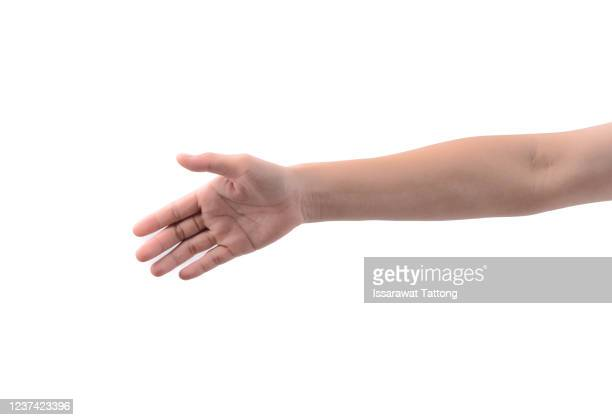 woman stretching hand to handshake isolated on a white background. woman hand ready for handshaking - human arm fotografías e imágenes de stock