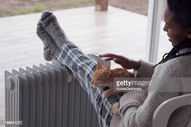 frau streichelt eine katze, sitzt zu hause in der regnerischen winterzeit. - hairy woman stock-fotos und bilder