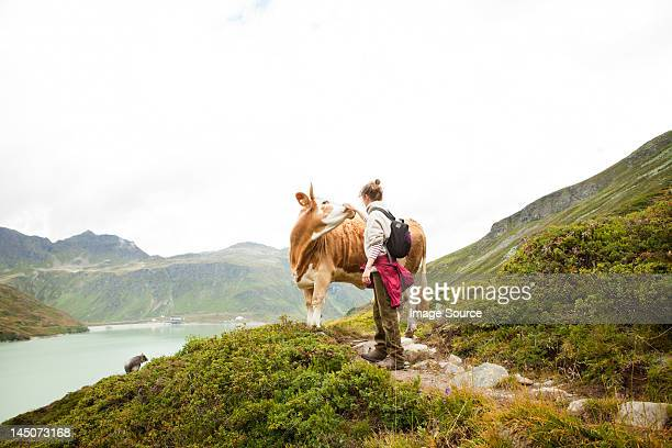Woman stroking a cow, Alps, Tirol, Austria