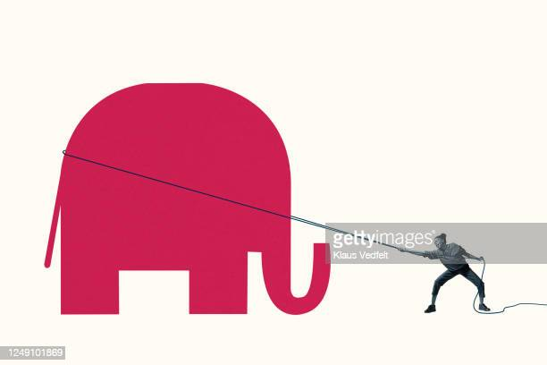 woman struggling to pull red elephant with rope - american culture stock pictures, royalty-free photos & images