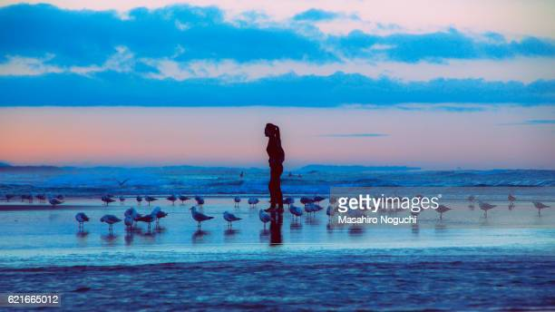 A woman surrounded by seagulls on the beach of Gold Coast, Australia, before dawn