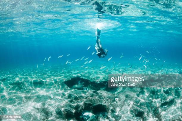 woman swimming in sea - arrecife stock photos and pictures