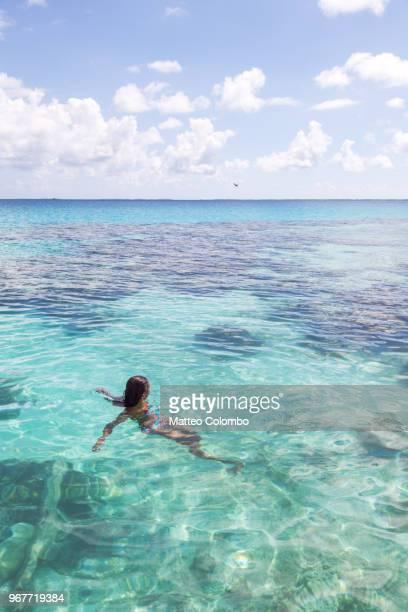 woman swimming in the blue lagoon of tikehau, polynesia - lagune stockfoto's en -beelden
