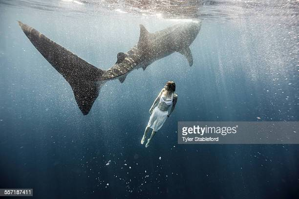 Woman swimming with whale shark.