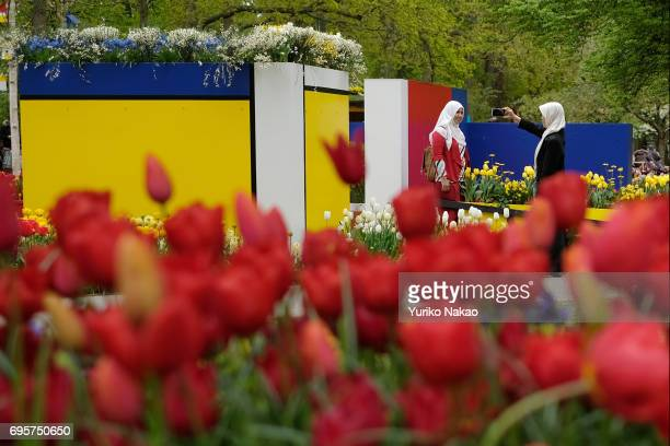 A woman takes a photo in front of Dutch painter Piet Mondrian style flower design artwork at the Keukenhof the world's largest flower and tulip...