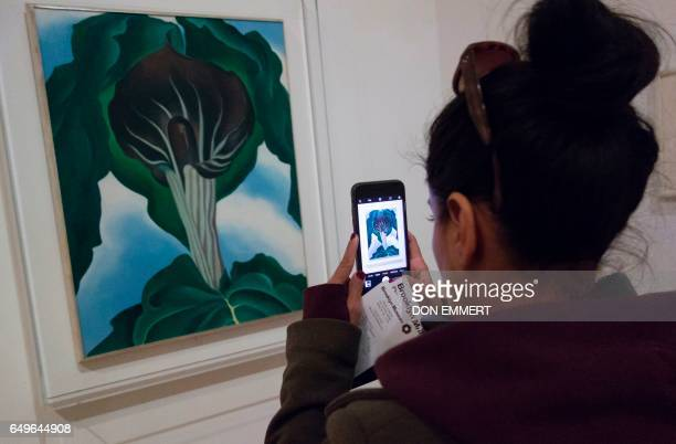 A woman takes a photo of a painting at a Georgia O'Keeffe exhibit at the Brooklyn Museum March 8 2017 in New York Everyone knows her magnified...