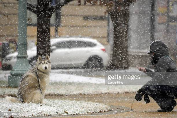 A woman takes a picture of her dog on January 17 2018 in Raleigh North Carolina Governor Roy Cooper declared a State of Emergency yesterday ahead of...