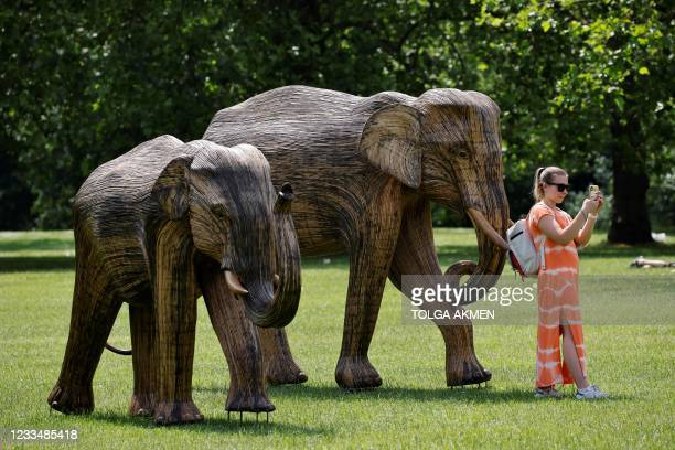 Woman takes a selfie photograph with life-size sculptures of a herd of Asian elephants set up by the Elephant Family and The Real Elephant Collective...