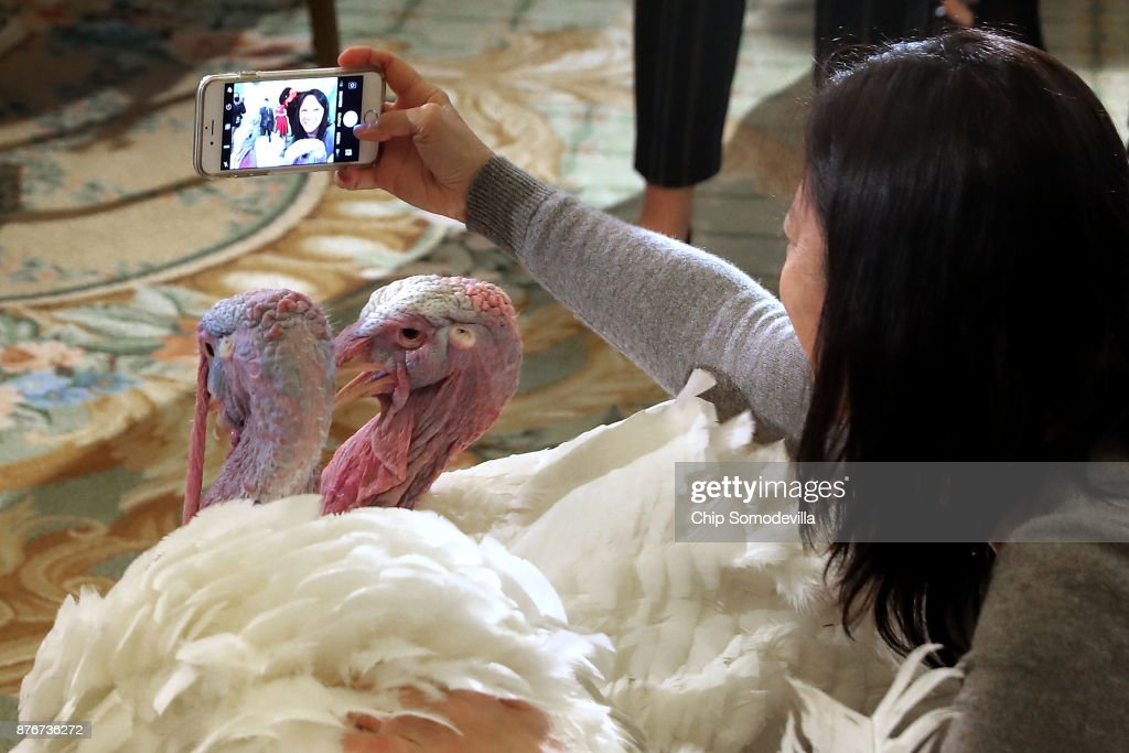 A woman takes a selfie with Drumstick and Wishbone, the National Thanksgiving Turkey and its alternate 'wingman,' during an event hosted by The National Turkey Federation at the Williard InterContinental November 20, 2017 in Washington, DC. One of the 40-pound fowl will be presented to U.S. President Donald Trump at the White House Tuesday, when he will ceremoniously 'pardon' the turkey. Both of the 20-week-old birds will then reside at their new home, 'Gobbler's Rest,' at Virginia Tech.