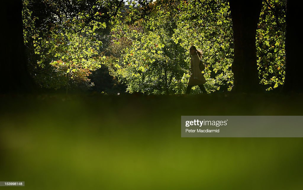 A woman takes a stroll in Hyde Park on October 12, 2012 in London, England. Autumnal colours are beginning to show in parts of the United Kingdom.