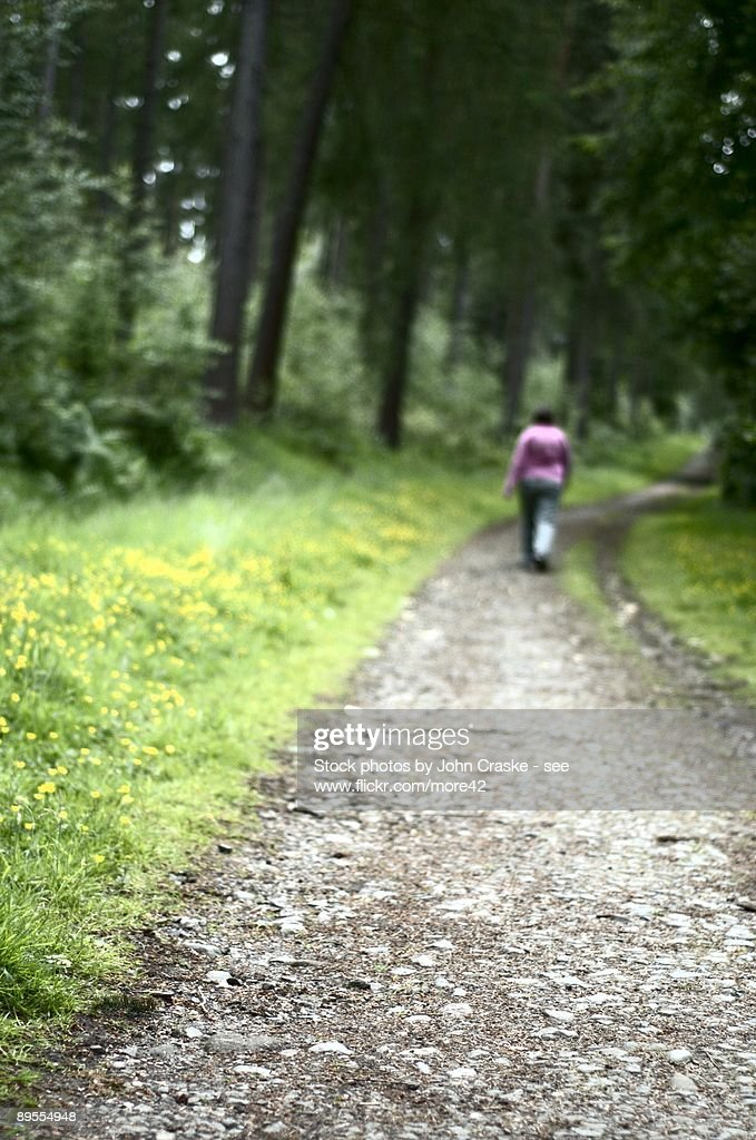 Single Woman Walking Along The Forest Path. Stock Image