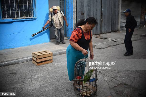A woman takes her parrot outside while a Health ministry worker fumigates her home against the Aedes aegypti mosquito vector of the dengue Zika and...