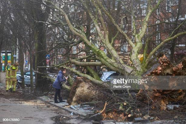 A woman takes photos of a vehicle under fallen trees as a hurricaneforce storm blows galewinds up to force 12 on January 18 2018 in The Hague...