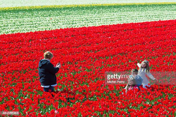 A woman takes pictures of children in the flower fields on April 13 2014 in Noordwijkerhout Netherlands The fields are in bloom early this year due...