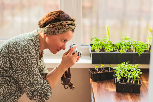 A woman takes pictures with a retro camera of the plants that she has grown in her home garden for her blog.