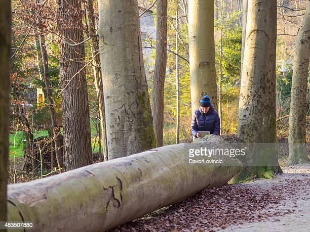 Frau nimmt ein Foto von großen Baum zu Weihnachten.