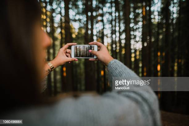 woman taking a picture of a forest - photography themes stock pictures, royalty-free photos & images