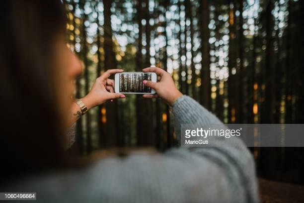 vrouw nemen van een foto van een bos - fotografische thema's stockfoto's en -beelden