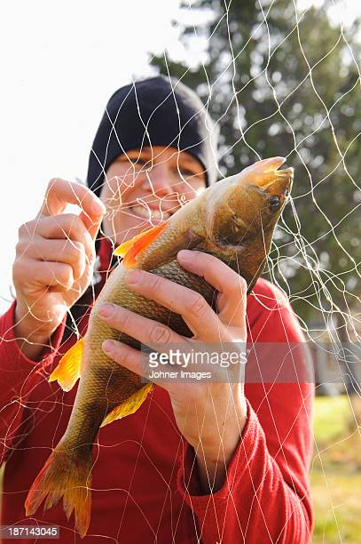 woman taking out fish from fishing net - perch fish stock pictures, royalty-free photos & images