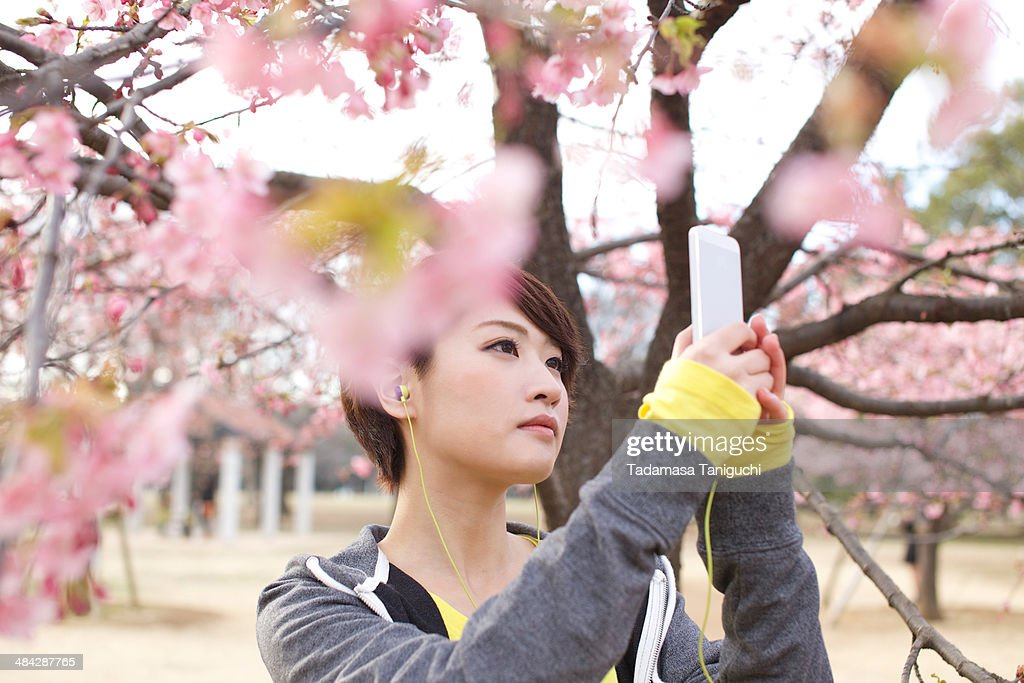 Woman taking photo of flower : Stock Photo