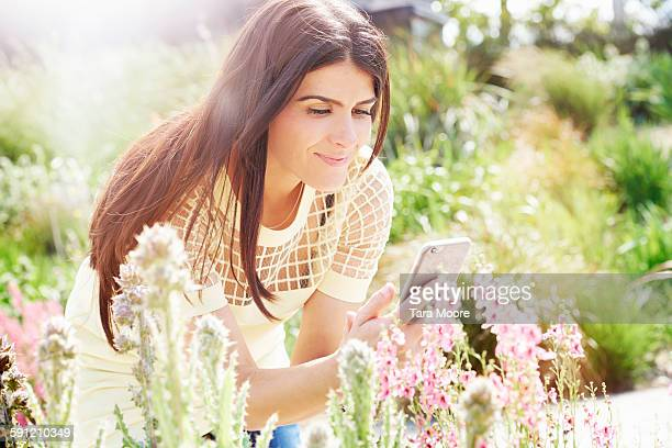 woman taking photo of flowers with mobile
