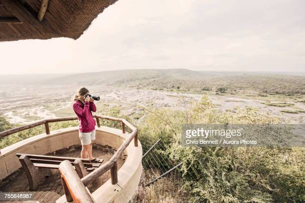 woman taking picture at overlook in kruger national park, south africa - kruger national park stock pictures, royalty-free photos & images