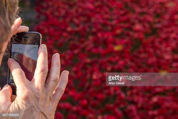 Woman taking picture with smartphone in the London Tower with the red Remembrance poppies. United Kingdom, Europe.