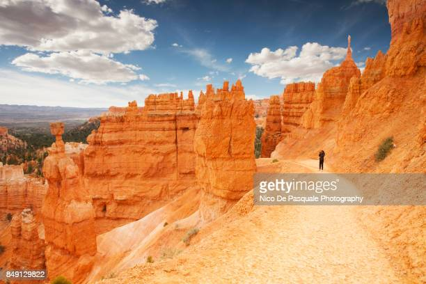 woman taking pictures, bryce canyon - bryce canyon stock pictures, royalty-free photos & images
